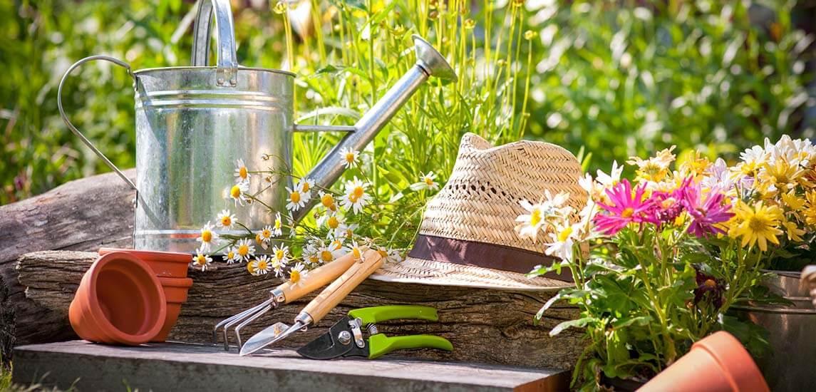 Profi kertgondozás az Ön személyes igényei szerint