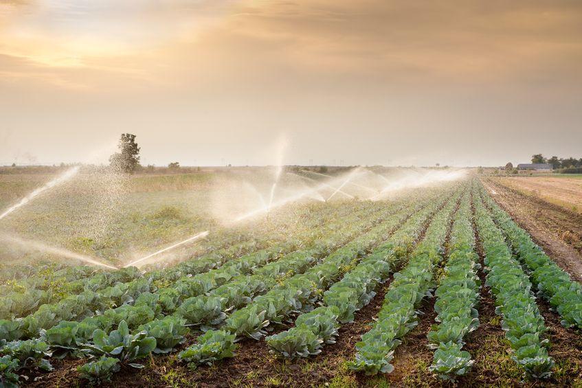 Mezőgazdasági öntözéstechnika
