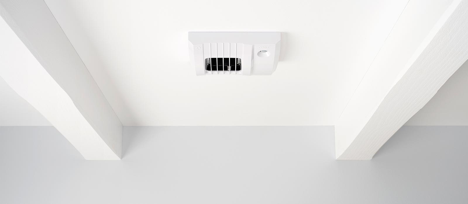 Penész eltávolítása falról egyszerűen, kedvező áron