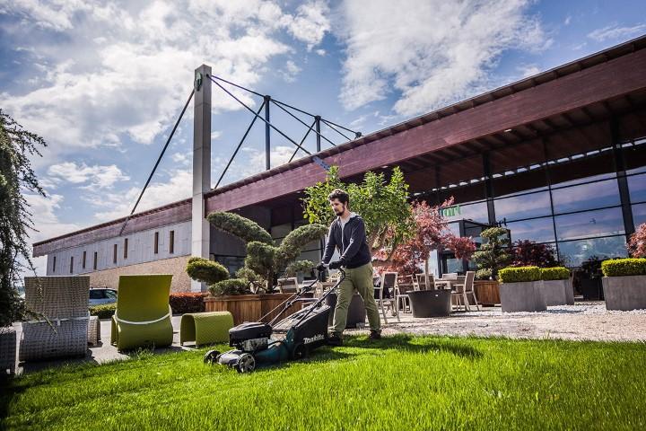 Profi parképítés irodaházakba és bevásárlóközpontokba