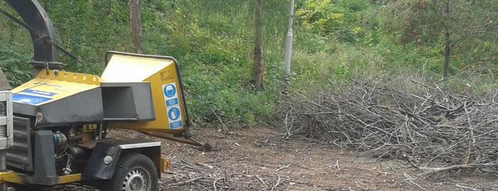 Nem bír el a zöld hulladékkal? Segítünk!