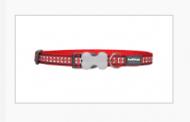 Vásároljon fényvisszaverős nyakörvet kutyájának!