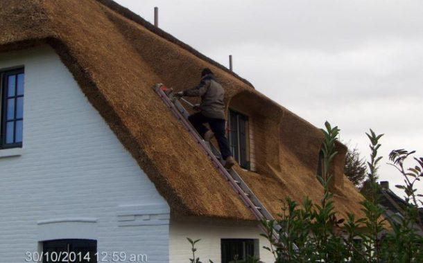 Esztétikus tető nádból!